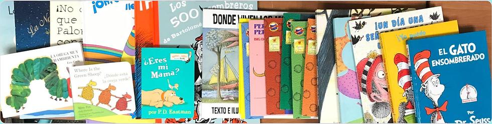 LPEV Books – Panorama.png