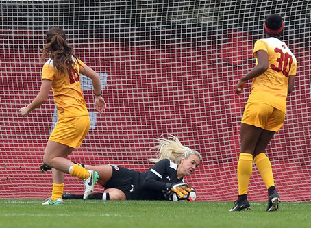 The Life of a Goalkeeper- by Carly Nelson