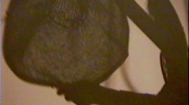 PageImage-507881-3305335-shadowsofobsess