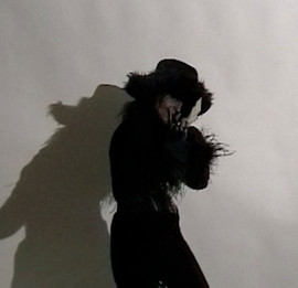PageImage-507881-3305284-handshadow3.jpg