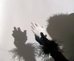PageImage-507881-3305249-shadowsofhands2