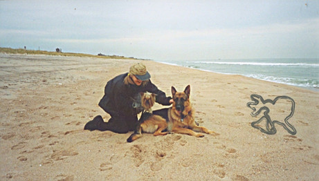 Wolfman on the Beach in the Hamptons