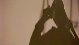 PageImage-507881-3305334-shadowsofobsess