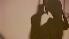 PageImage-507881-3305330-shadowsofobsess