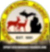 MSAH logo final 10122018.png