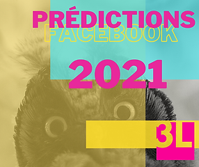 facebook prédictions 2021.png