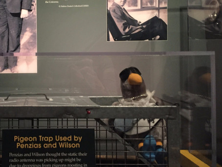 Discovering the Evidence of the Big Bang with Gisele the Pigeon