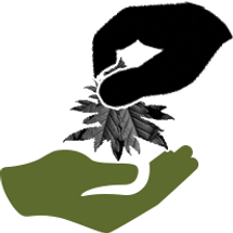 CANNA CLATCH - DONATE ICON.png