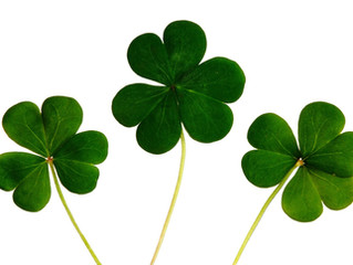 """May You Always Have """"The Luck Of The Irish"""""""