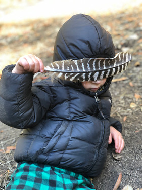 Quiet time with a wild turkey feather