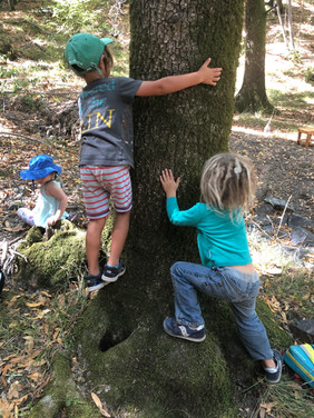 Playing and exploring in and with Nature