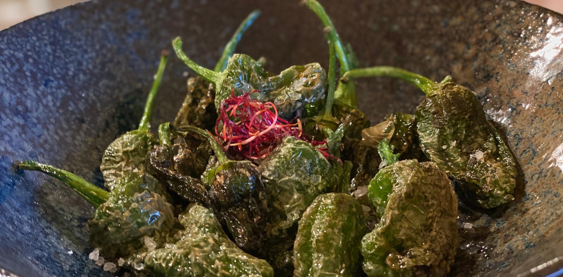 Pimientos Restaurant Dinner - Hotel Wegner - The culinary Art Hotel
