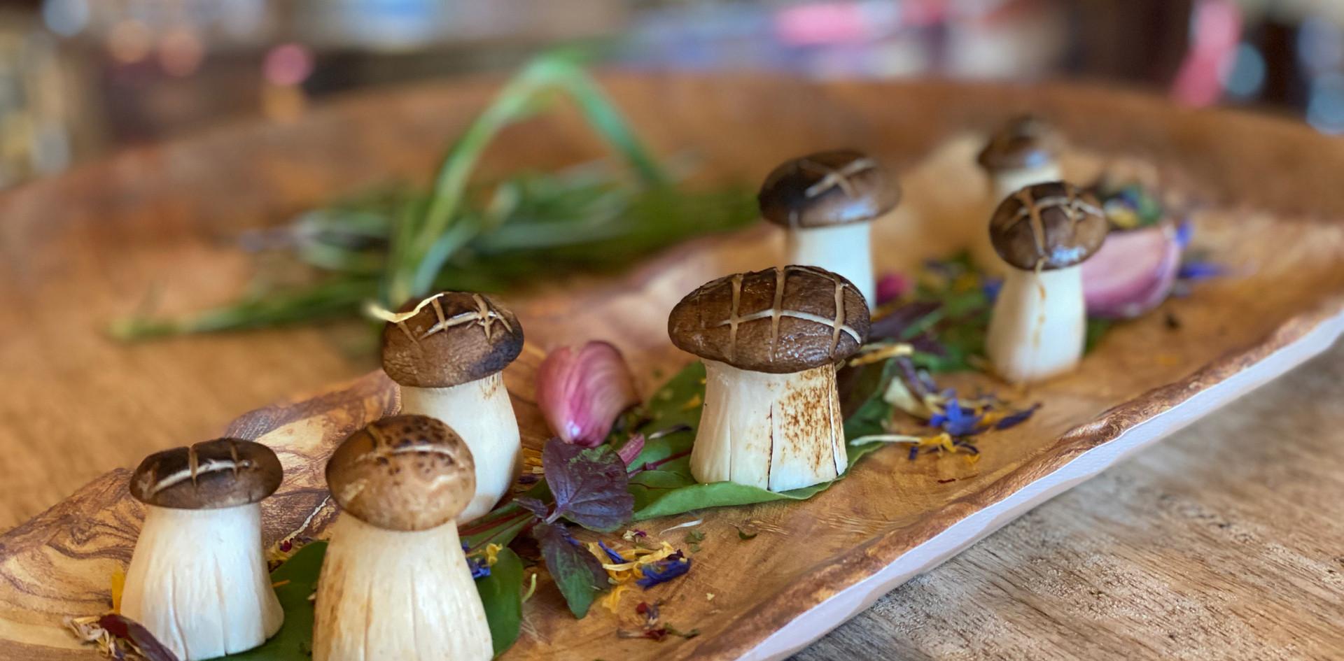 kunstvolle Pilze Restaurant Dinner - Hotel Wegner - The culinary Art Hotel