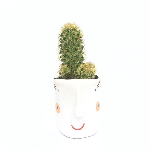 Smiley pots I