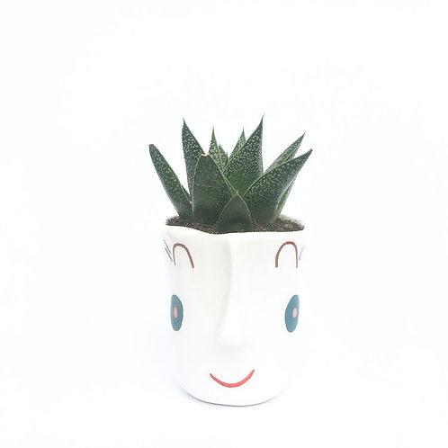 Smiley pots III