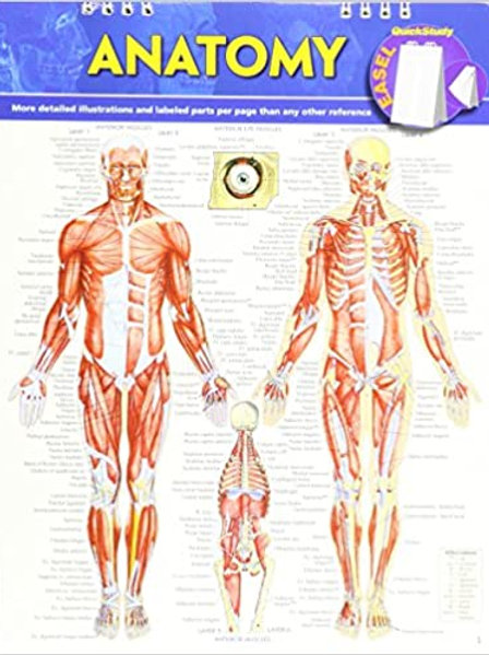 Anatomy Easel Book: A Quickstudy Reference Tool