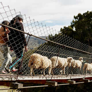 19. Chaqui Cocha Bridge, Bolivia_Credit Bridges to Prosperity/Photo: Collin Hughes