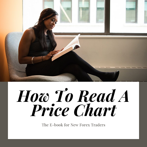 How To Read A Price Chart by Shaquan Lopez
