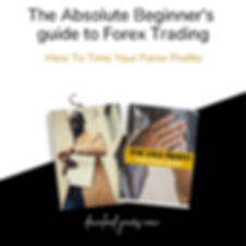 Copy of The Absolute Beginner's guide to
