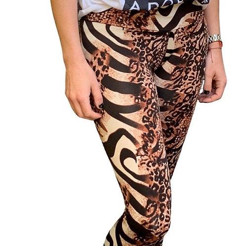 Calza tigre