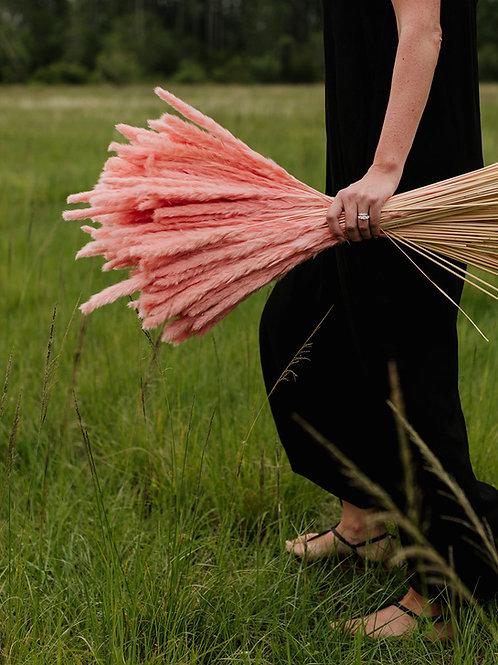Thin Pampas // Pink