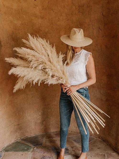 Large Pampas // Natural
