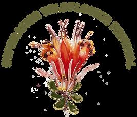 EWF_Logo.png