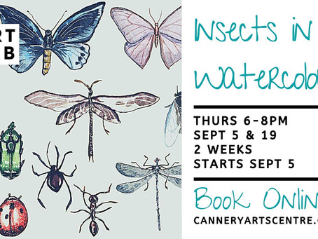 Linked Event, 5th & 16th September: Insects in Watercolour at the Cannery Arts Centre