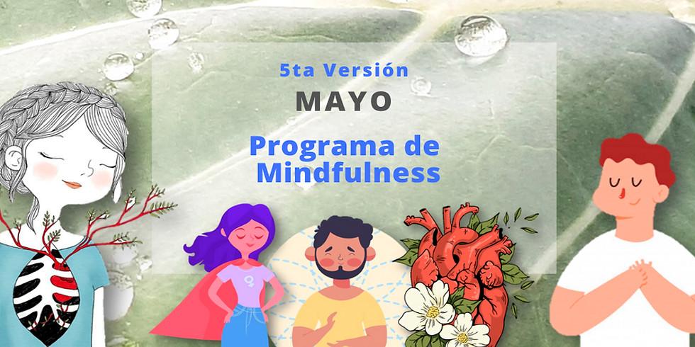 Programa Mindfulness MAYO online (Martes)