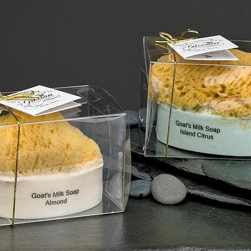 Goats Milk & Olive Oil Soaps w/embedded Natural Sea Sponge