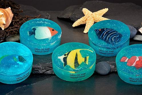Fish Soaps