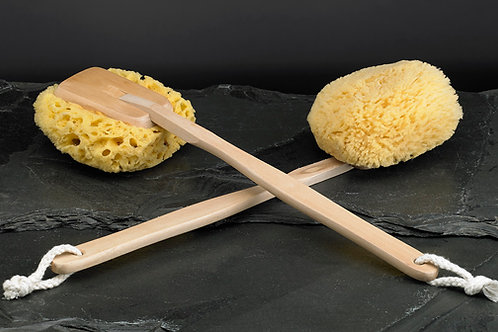 Natural Yellow Sponge on a Stick