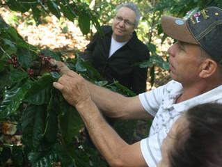 Nicaraguan Coffee: 20 Years, 3 disasters, immeasurable impact