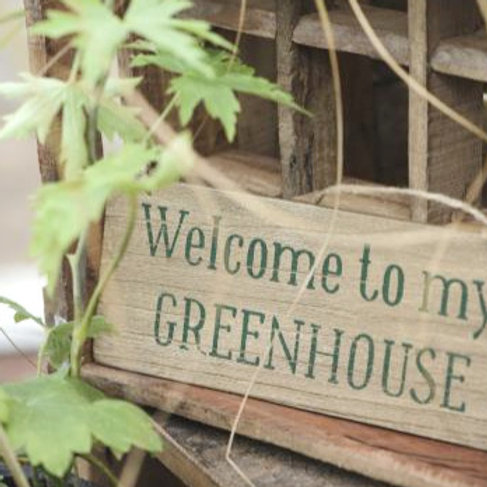 welcome to my greenhouse