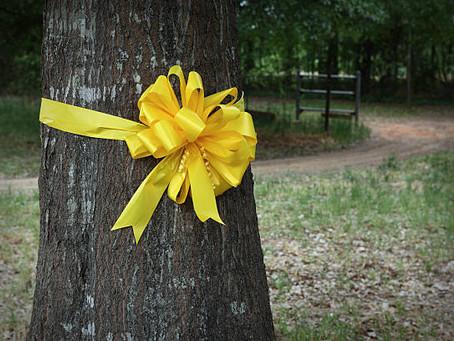 Yellow helps to symbolize patriotism
