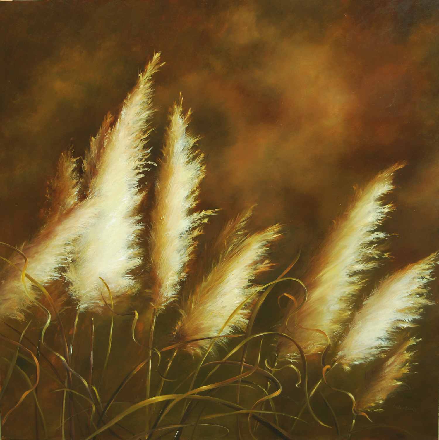 "Pampas Grasses 40"" x 40""oil on panel"