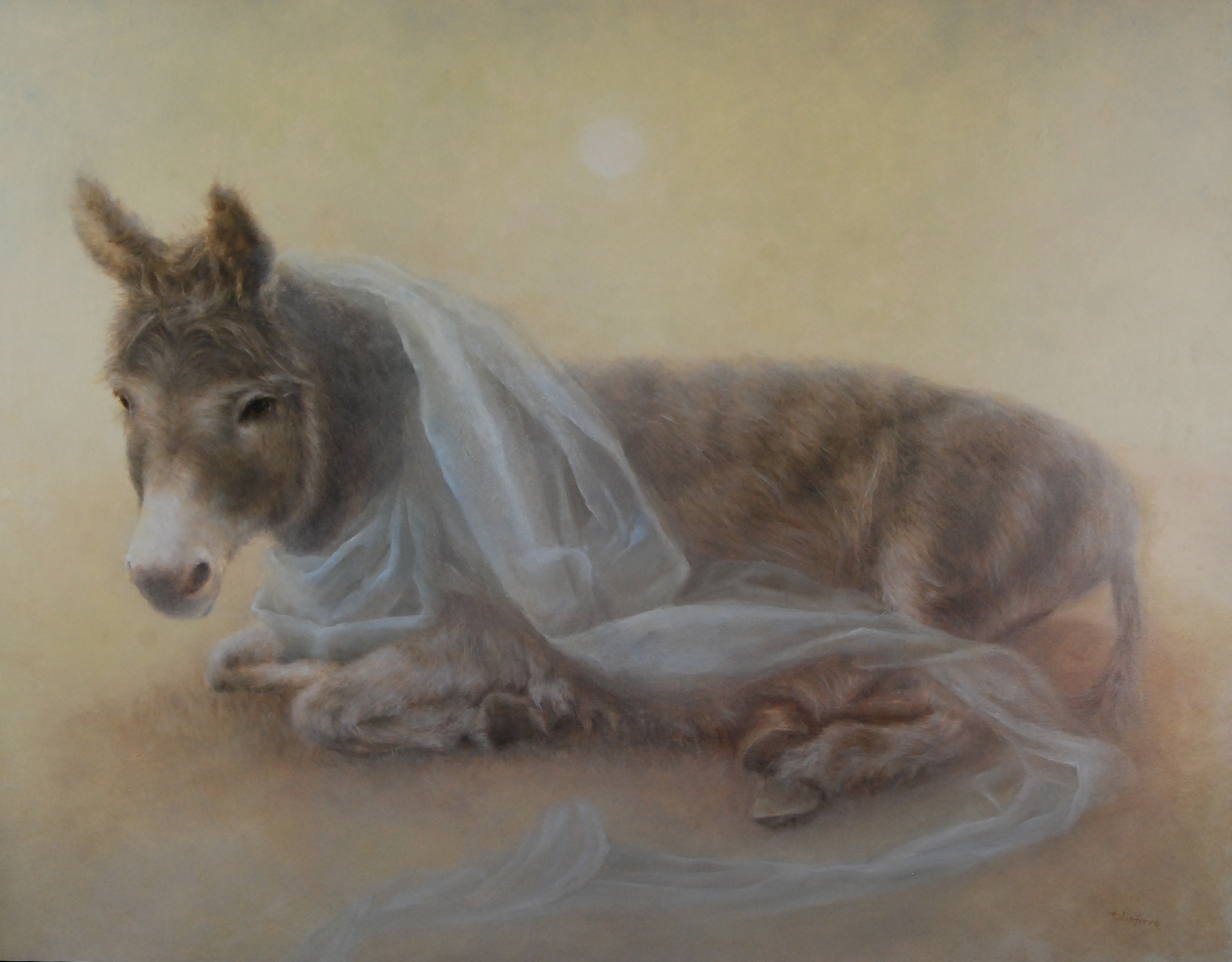 Sacred Veil I