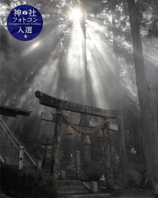フォトコン3_3入選11.jpg