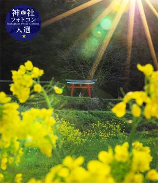 フォトコン3_3入選-05.jpg
