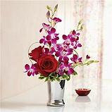 orchid rose.jpg