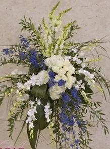 blue&white.JPG