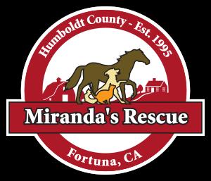 miranda's dog rescue.png