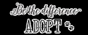 adopt_edited.png