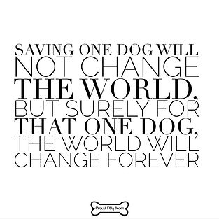 Dog-Quotes-Rescue.jpg