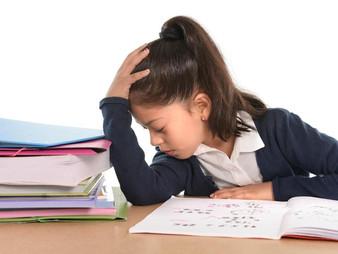 ¿Por qué hay niños que no quieren estudiar?