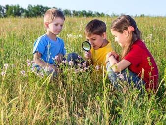 Conectar a los niños con la naturaleza