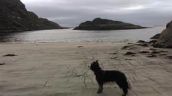 Coruisk beach