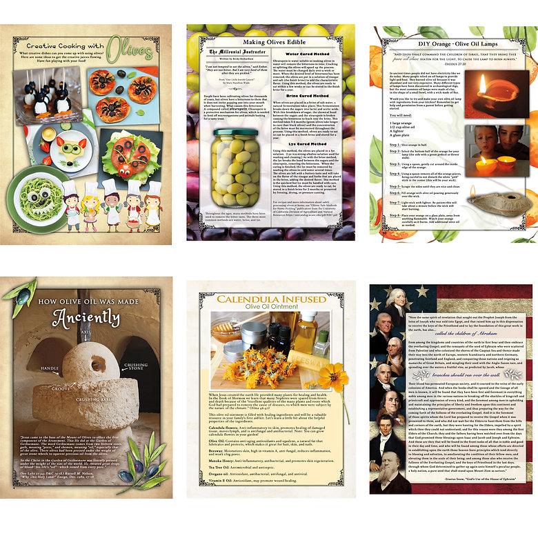 olive promo.jpg