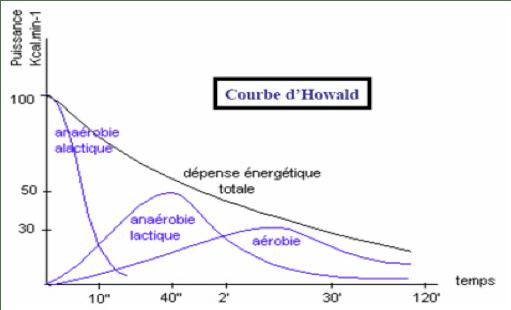 Les filièrs énergétiques avec la courbe d'howald