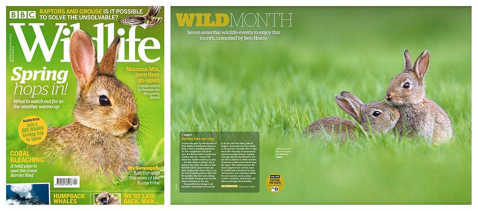 BBC_Wildlife_DPS1.jpg